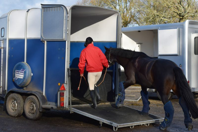 Choosing and driving a horse trailer